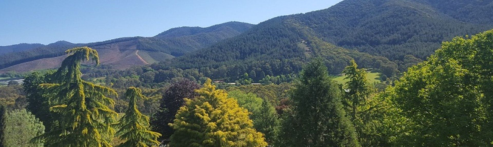 Posto de Turismo Alpine, Bright, Victoria, Austrália