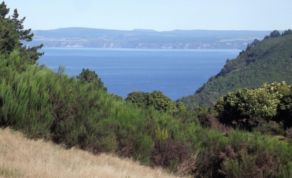 Acacia Bay, Taupo, Waikato, Neuseeland
