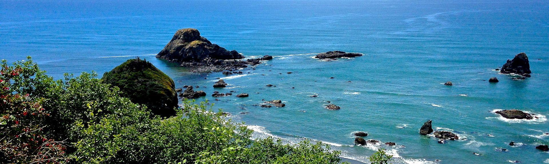 Trinidad State Beach, Trinidad, Californië, Verenigde Staten