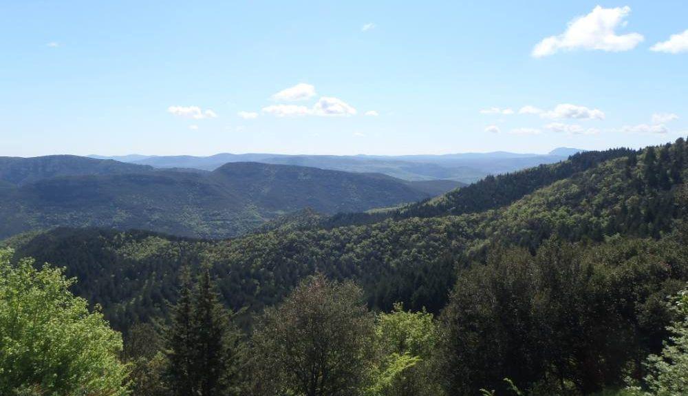 Blandas, Occitanie, France