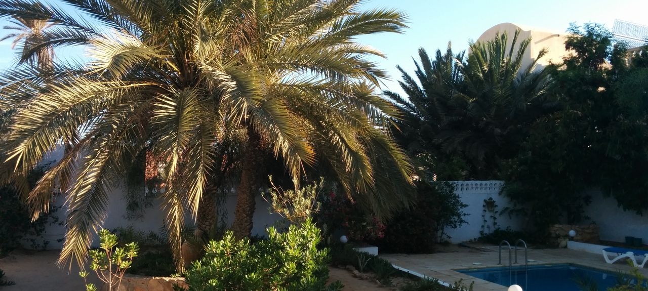Djerba, Médenine, Tunisie