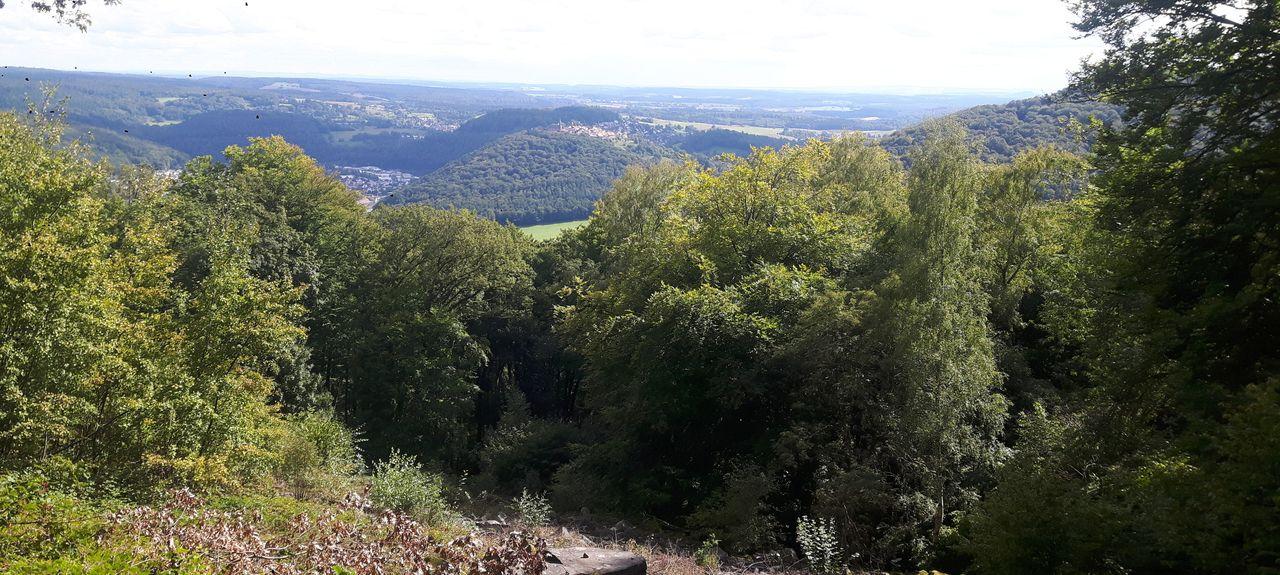 Wiesloch, Baden-Württemberg, Germany