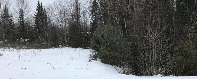 Arden, ON, Canada