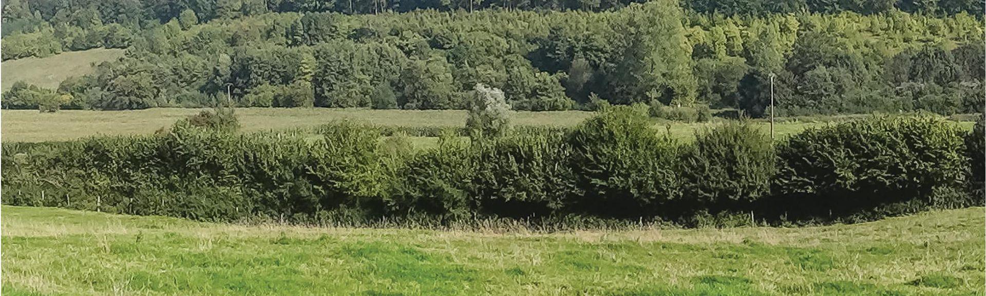 Broquiers, Oise (departement), Frankrijk