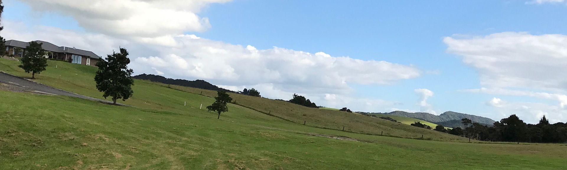 Kawakawa, Far North, Northland, New Zealand