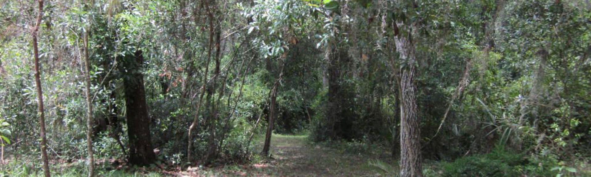 Fort McCoy, FL, USA