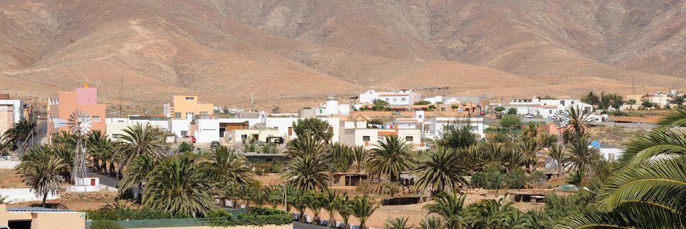 Antigua, Canarias, España