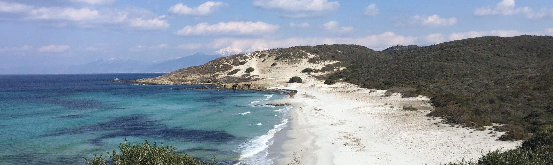 Scandola Nature Reserve, Osani, Corse-du-Sud, France