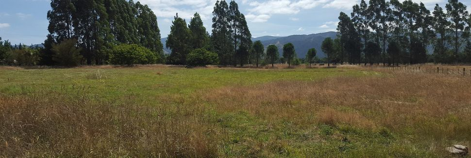 Gladstone, Wairarapa, Wellington, New Zealand