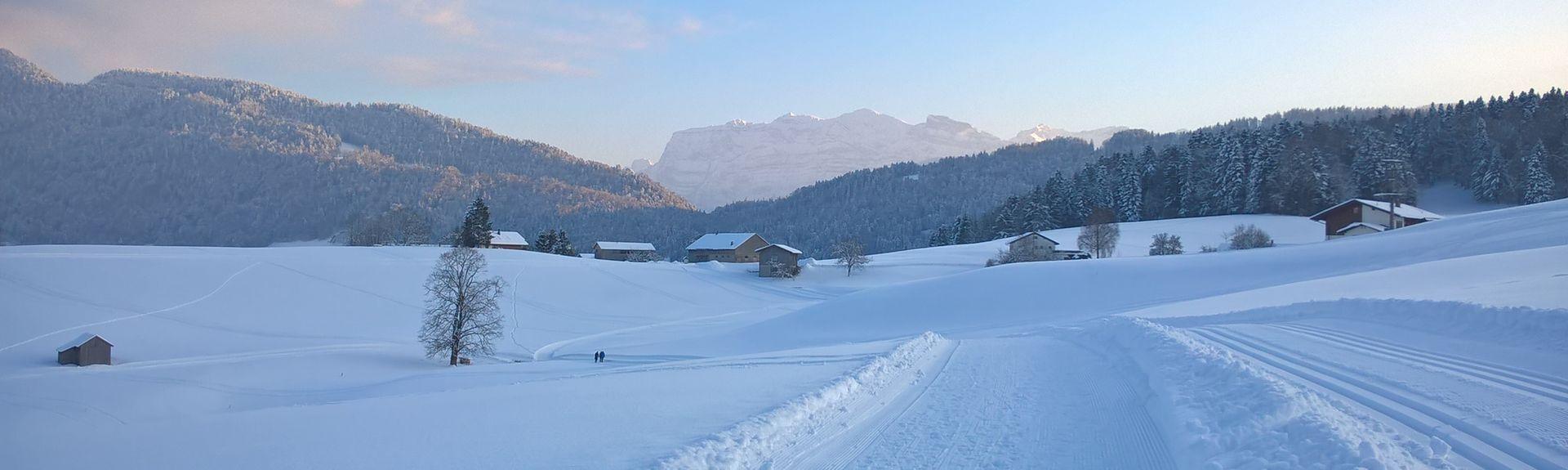 Steinmaehder Ski Lift, Lech, Austria