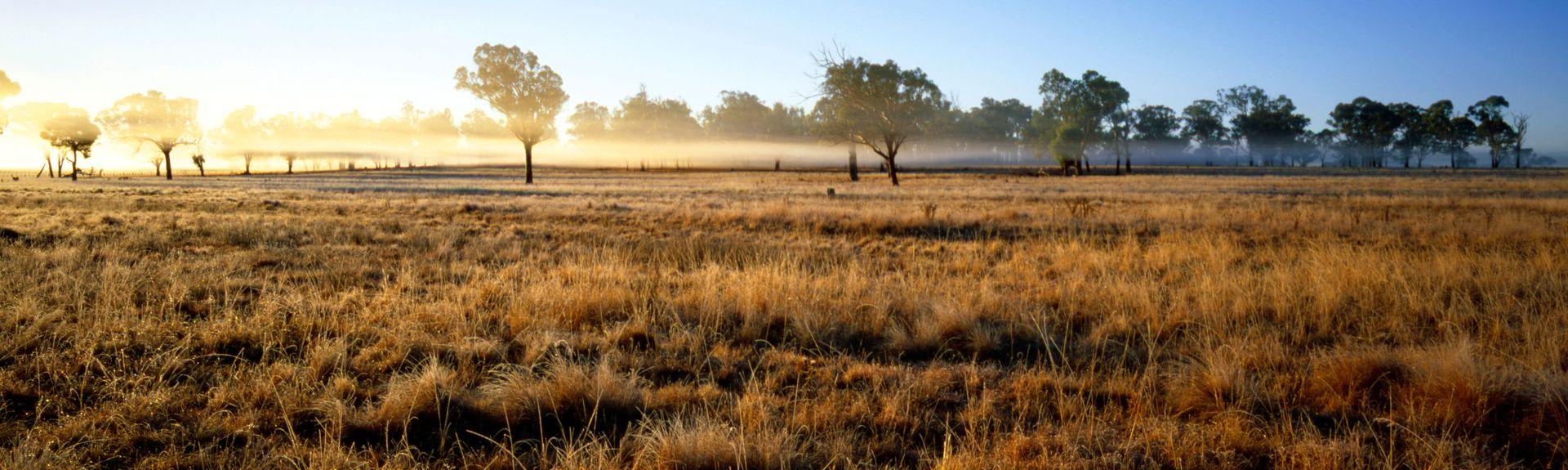 Armidale, New South Wales, Australien