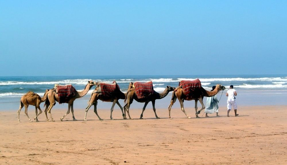 Sidi Bouzid, Morocco