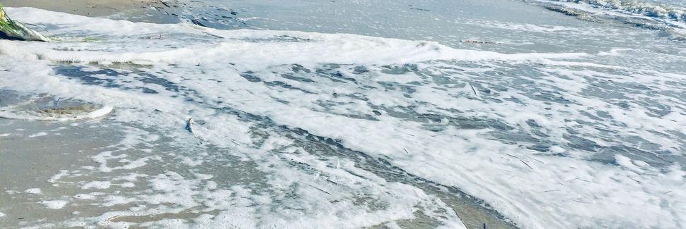 Melrose on the Beach, Daufuskie Island, Caroline du Sud, États-Unis d'Amérique