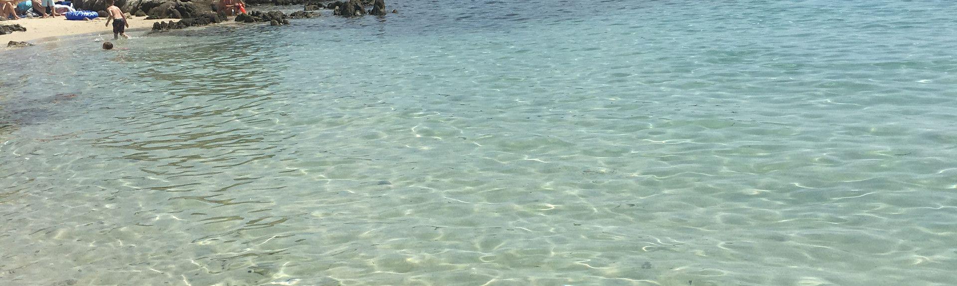 Smaragdirannikko, Sardinia, Italia
