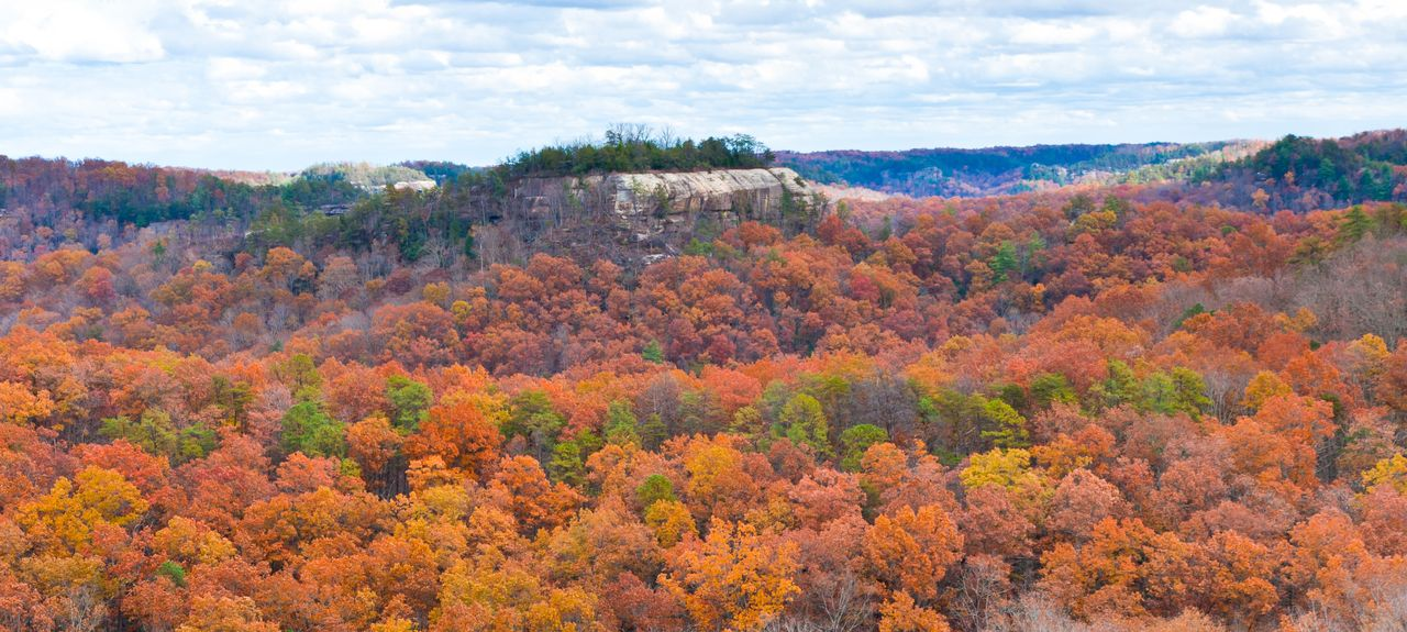 Red River Gorge, Kentucky, United States