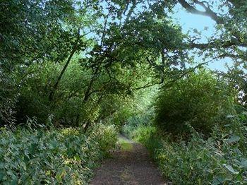 Burghfield, England, UK