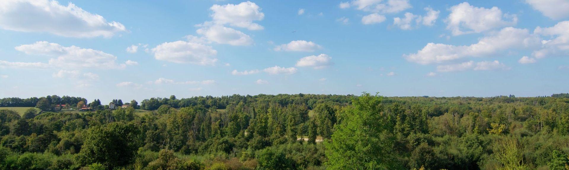 Mazerolles, Charente, Aquitaine Limousin Poitou-Charentes, Frankrijk