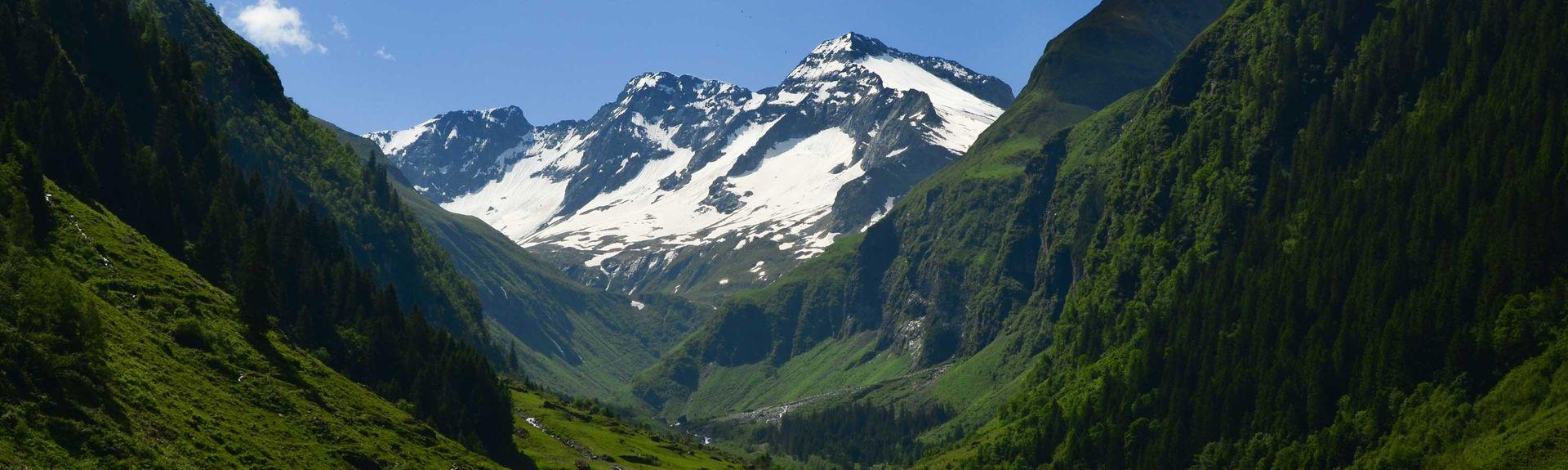 Nationalpark Hohe Tauern, Matrei in Osttirol, Tirol, Österreich