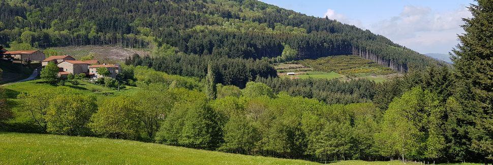 Montregard, Auvergne-Rhône-Alpes, Frankrike
