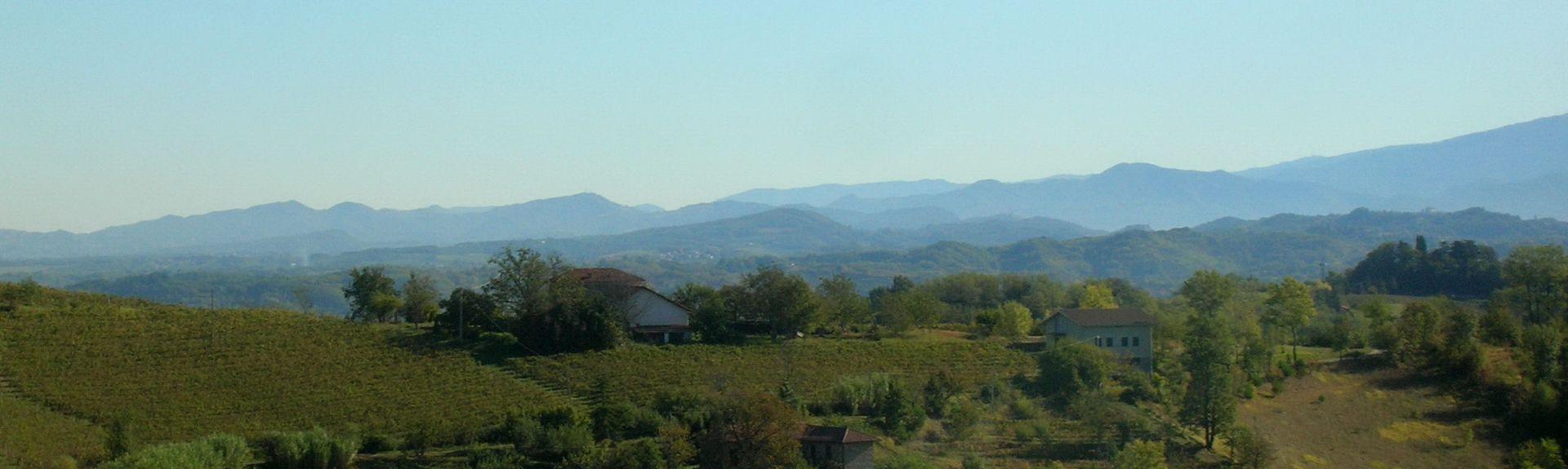 Pasturana, Piemonte, Itália