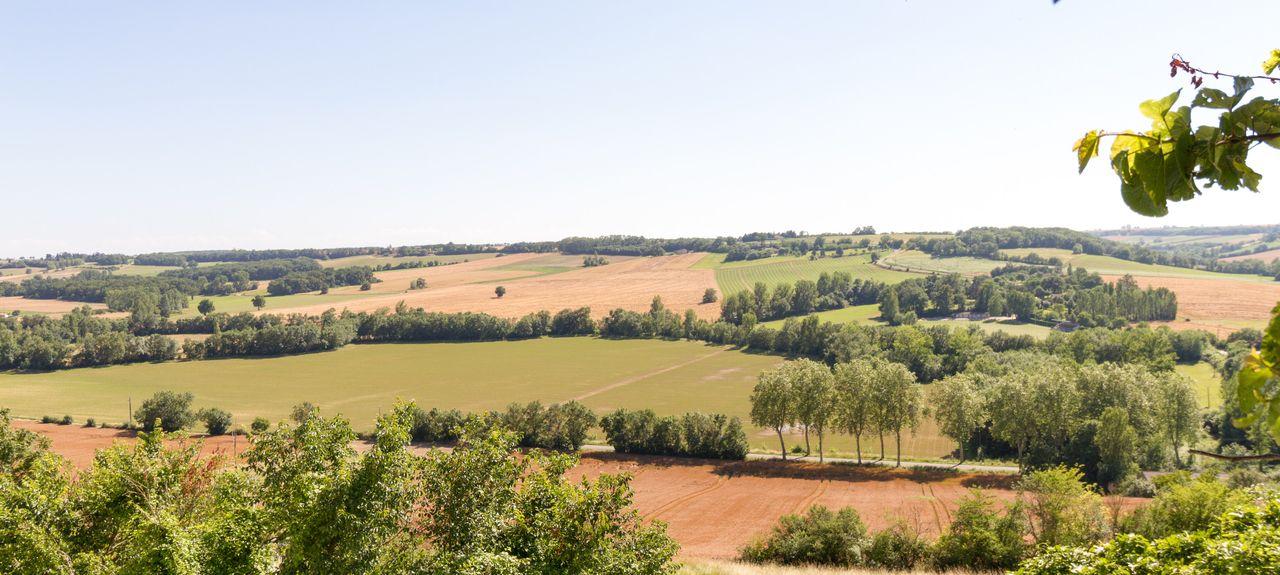Mansonville, Occitanie, France