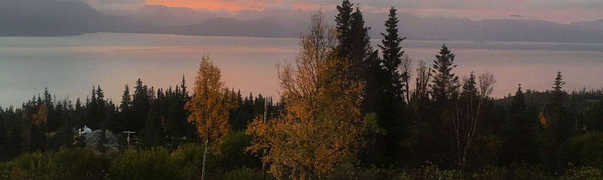Homer, Alaska, Estados Unidos