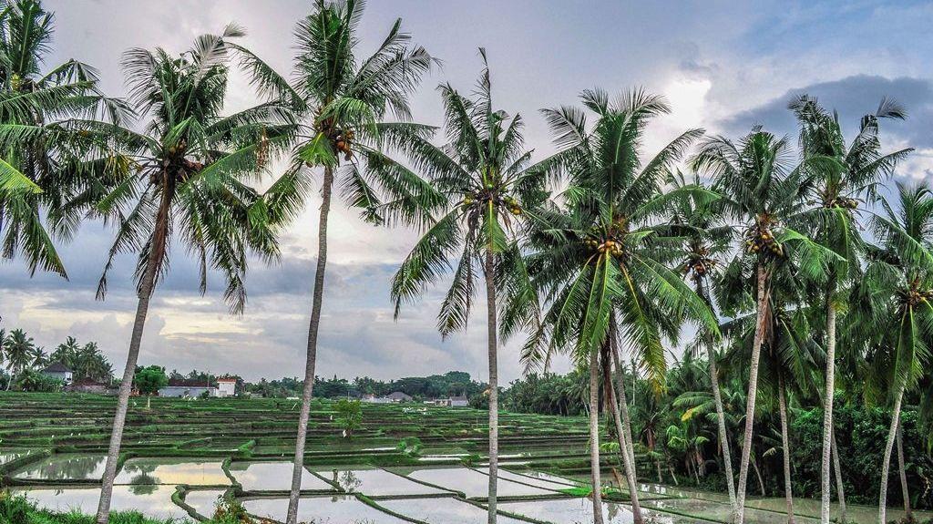 Keramas, Blahbatuh, Gianyar, Bali, Indonesia