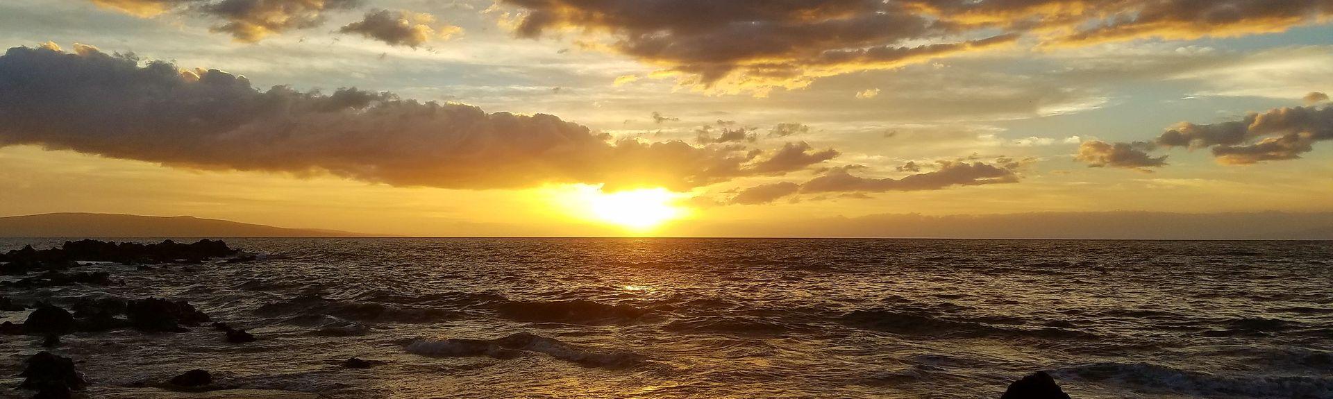 Maui Banyan (Kīhei, Hawaii, Vereinigte Staaten)