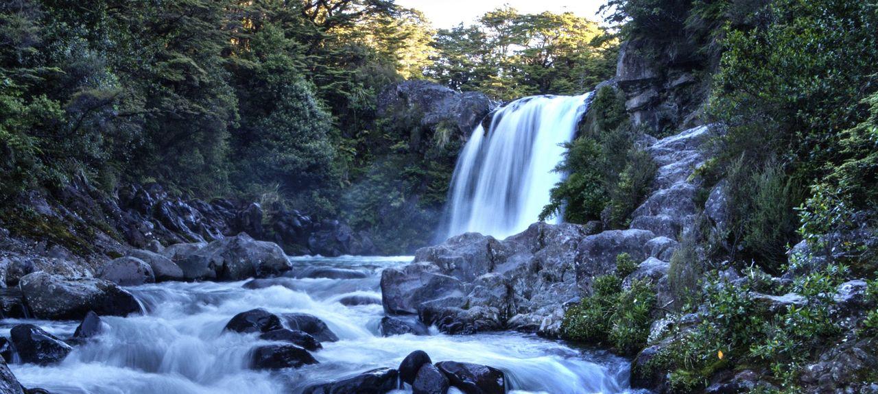 Rangatira Park, Taupo, Waikato, New Zealand