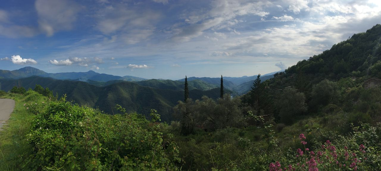 Olivetta San Michele, Imperia, Liguria, Italy