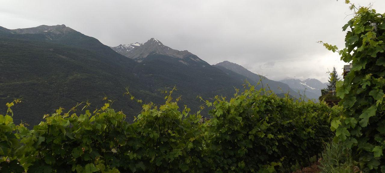 Pontey, Aosta Valley, Italy