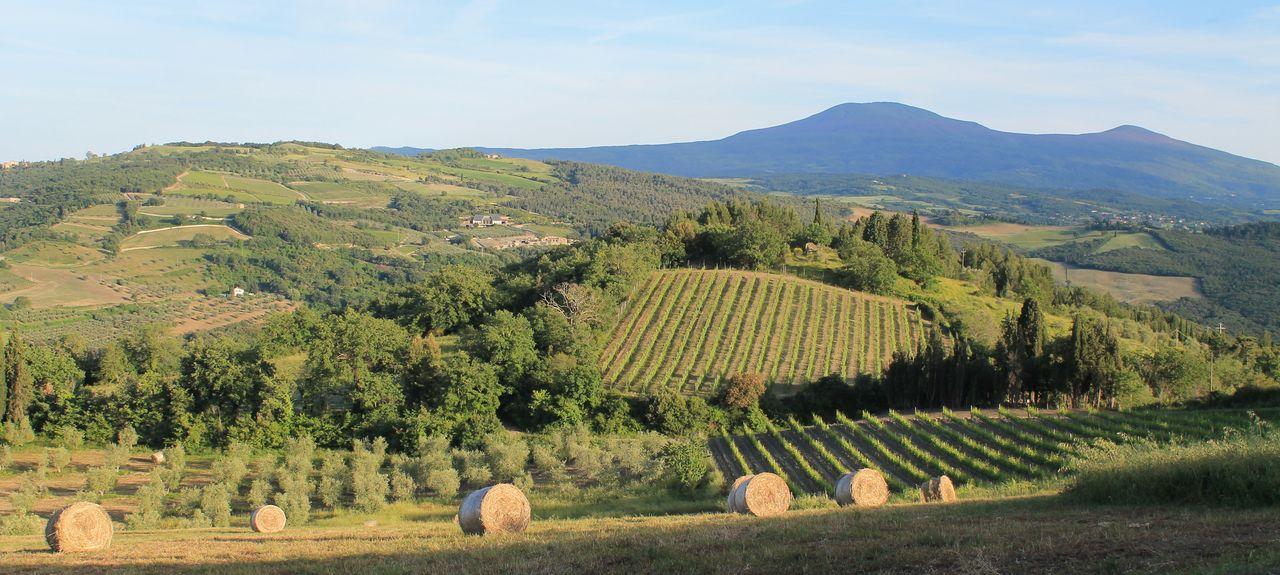 Seggiano, Grosseto, Tuscany, Italy