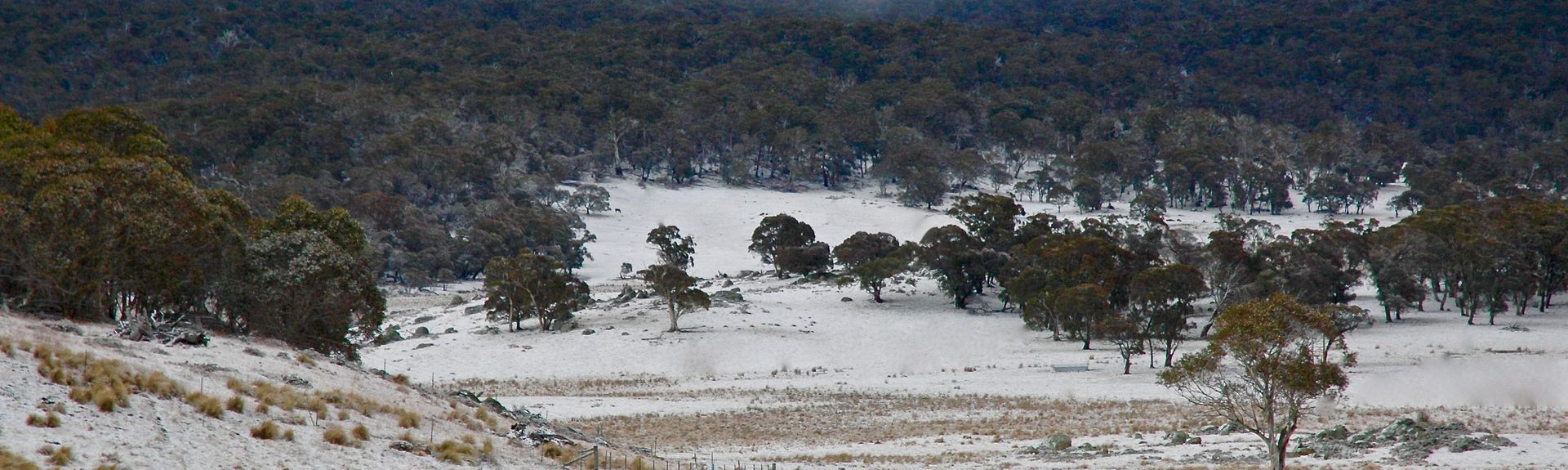 Snowy Mountains, NSW, Australia