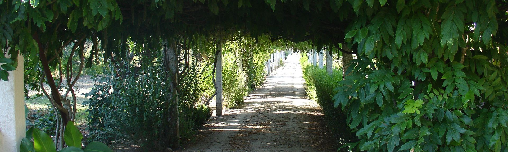 Bejan piiri, Portugali