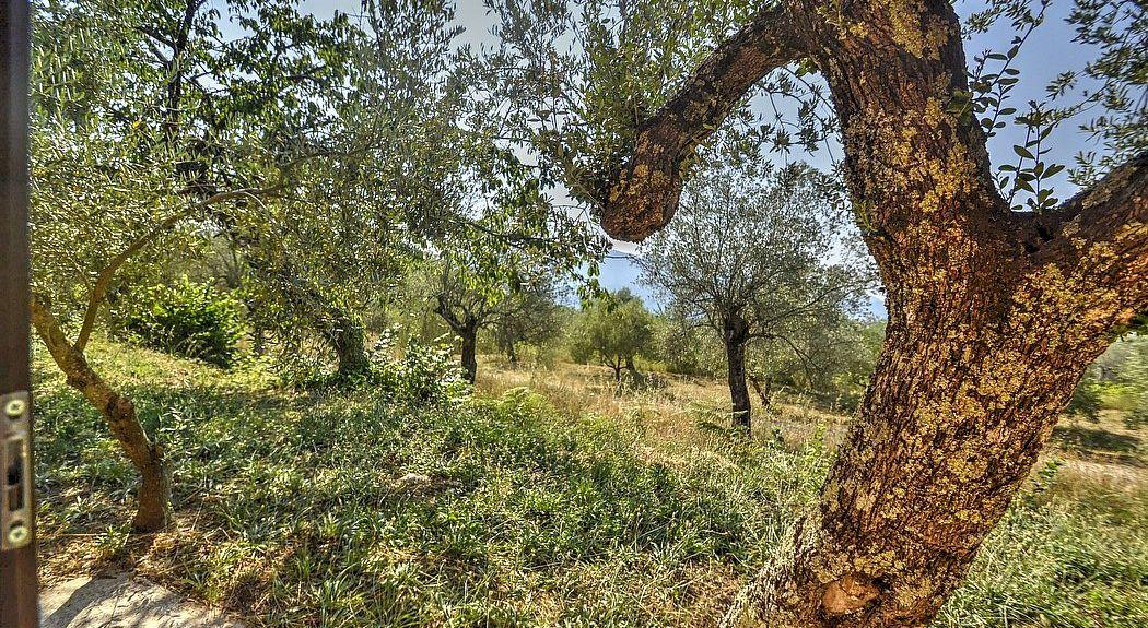 Tora e Piccilli, Province of Caserta, Campania, Italy