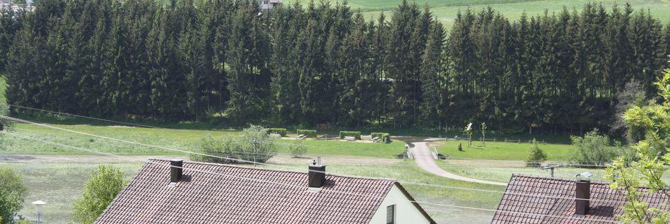 Zamek w Lichtenstein, Lichtenstein, BadeniaWirtembergia, Niemcy