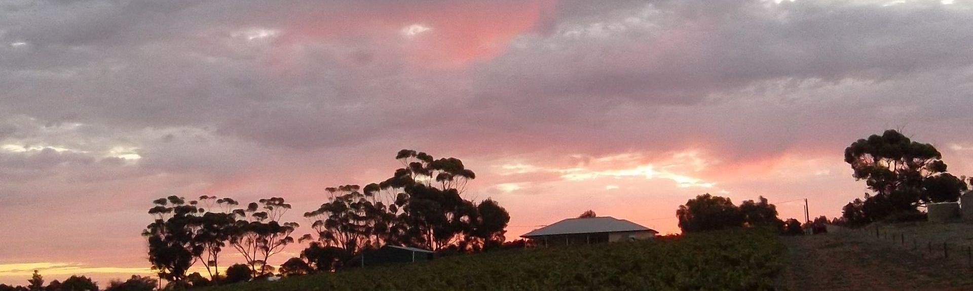 Saddleworth, South Australia, AU