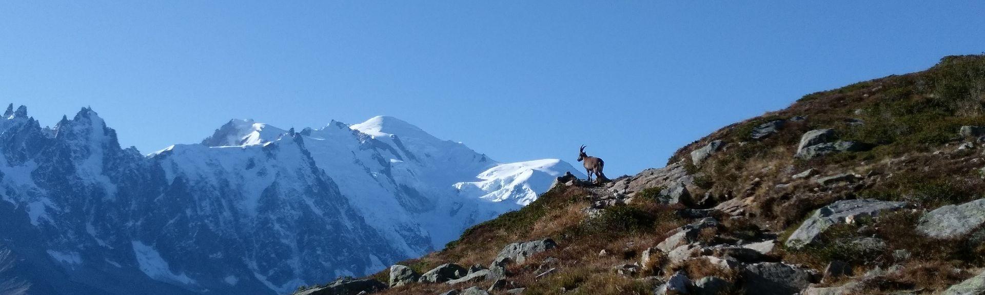 Les Carroz d'Arâches, Arâches-la-Frasse, Rhône-Alpes, France