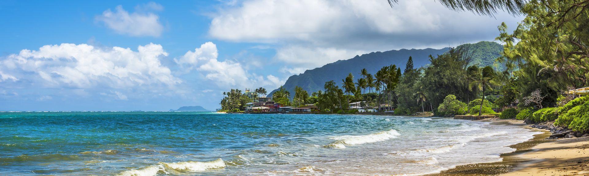 Punalu'u Beach, Pahala, Hawaii, USA