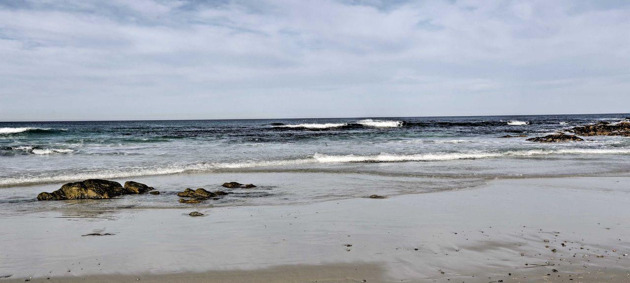 Point Lobos State Reserve, Carmel-by-the-Sea, Kalifornien, Vereinigte Staaten