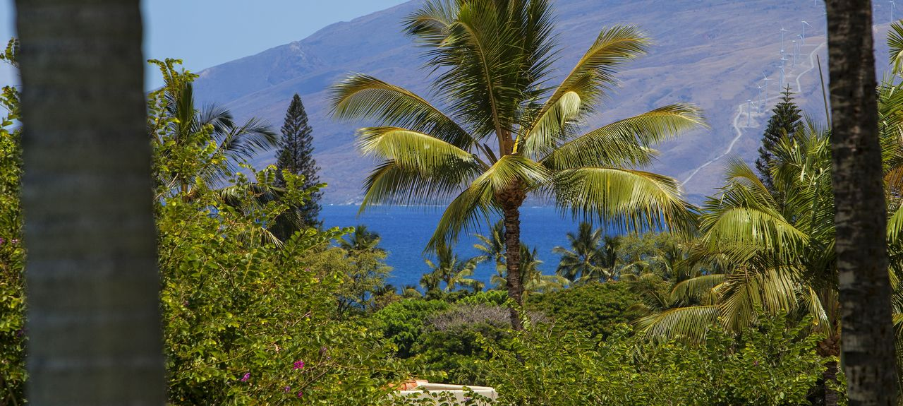 The Palms at Wailea (Wailea, Hawaii, United States)
