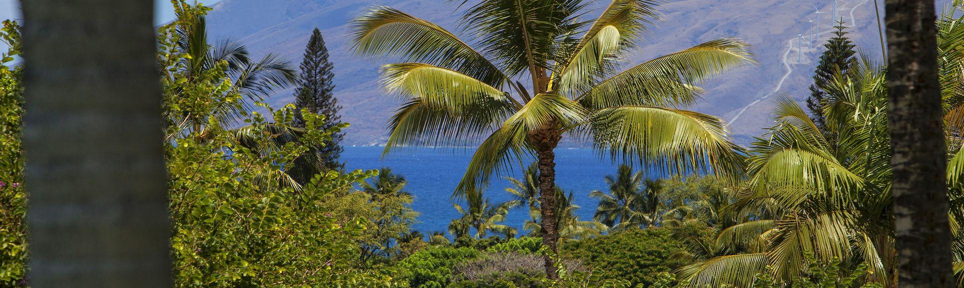 The Palms at Wailea, Wailea, Wailea-Makena, HI, USA