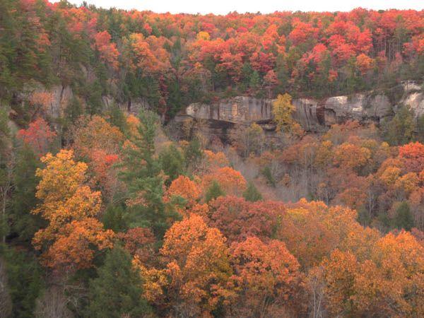 Pine Ridge, Kentucky, Estados Unidos