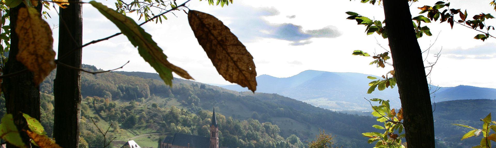 Andlau, Alsace-Champagne-Ardenne-Lorraine, France