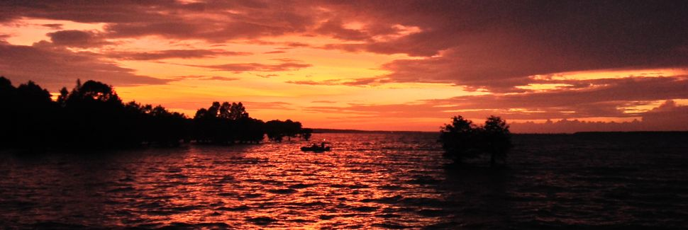 Lake Moultrie, South Carolina, USA