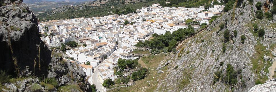Lagar Blanco, Montilla, Andalucía, Spania