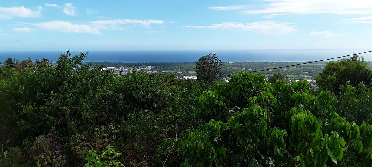 Maniron, Etang-Salé les Hauts, Saint Pierre, L'île de la Réunion