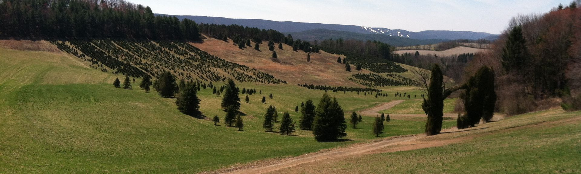 Blue Mountain Ski Area, Kunkletown, Pennsylvania, United States of America