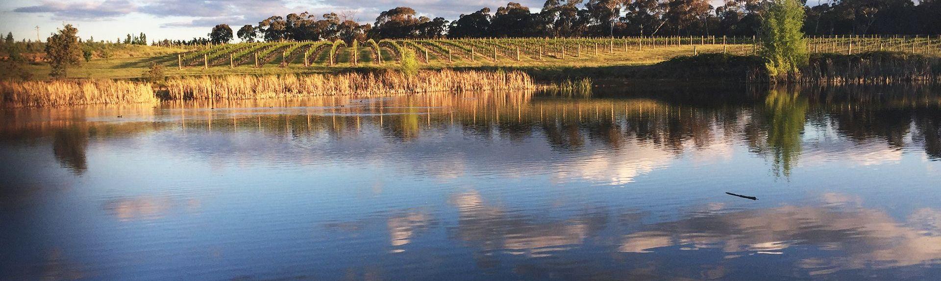 Borenore, Nouvelle Galles du Sud, Australie