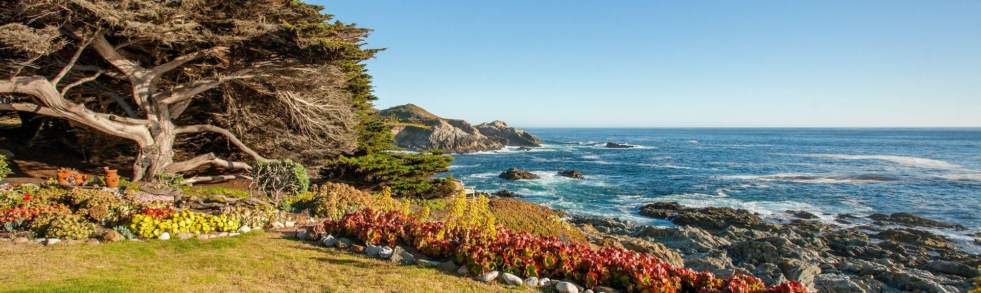 Del Monte Beach, Monterey, CA, USA